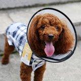 honden kunststof kraag klein
