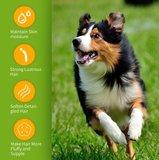 Anti- bacterie en vlooien shampoo voor honden en katten_