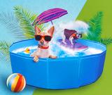 zwembad hond