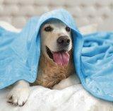 hondendeken zacht