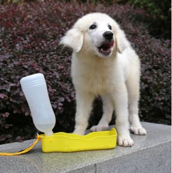 Portable waterfles