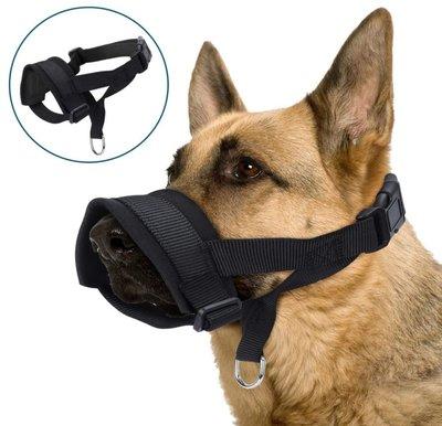 Honden halster Nylon