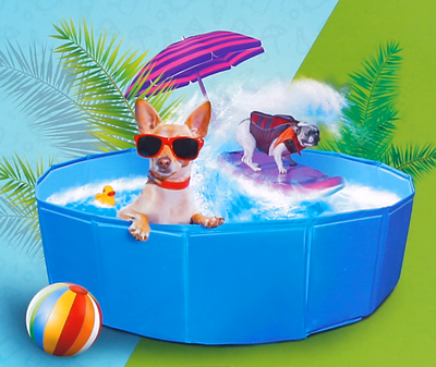 Zwembad voor honden 80 cm