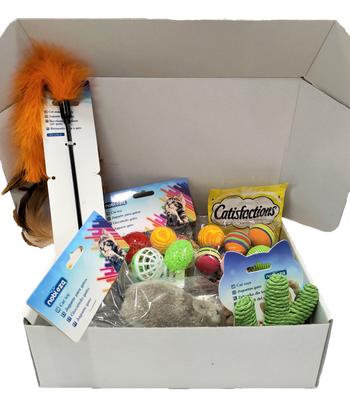Kitten giftbox