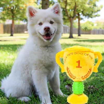 Hondenspeelgoed pluche knuffel trofee
