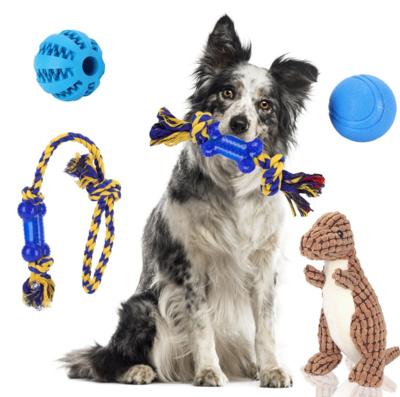 Hondenspeelgoed box met Touwen, ballen en knuffel